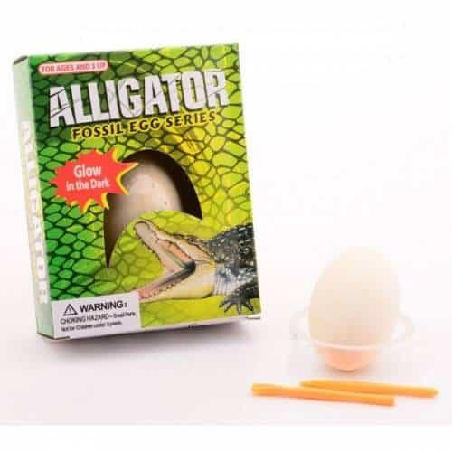 aligator uit ei